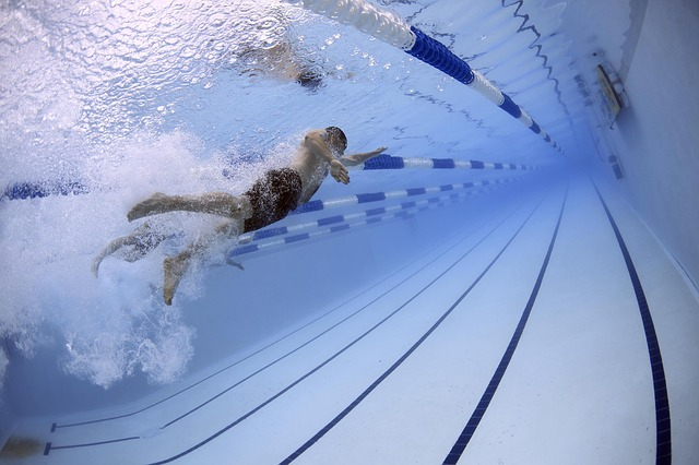 plavci v bazénu.jpg