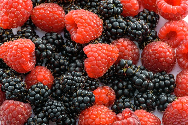 plody malin a ostružin.jpg
